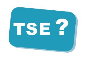 Was ist eine TSE?