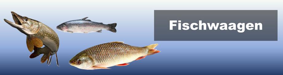 Fischwaagen